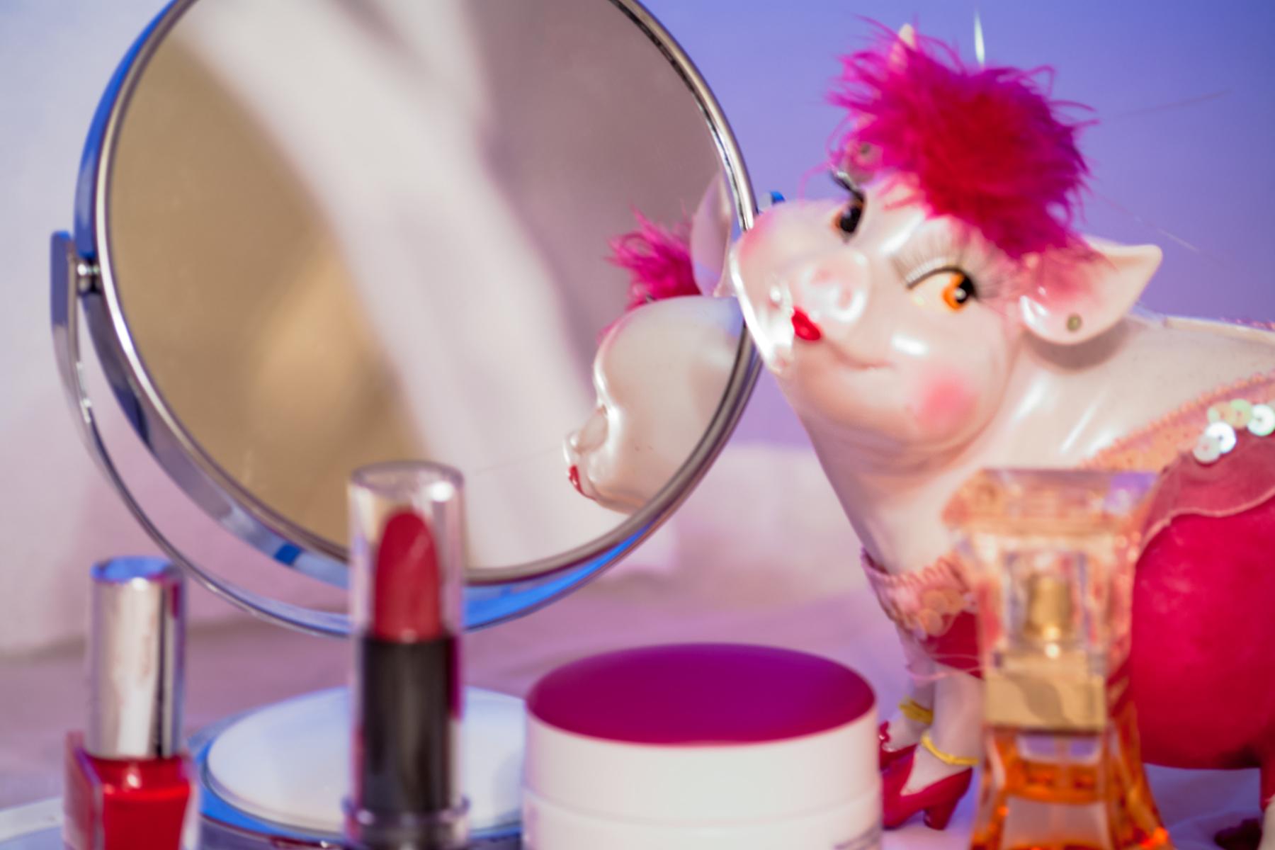 Lipstick_Pig_Design_For_Change